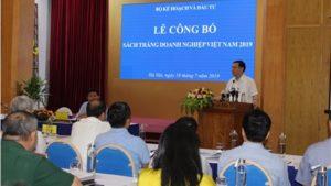 Sach Trang Doanh Nghiep Viet Nam 2019 Nhieu Chi So Tich Cuc Ve Dn Fdi 1